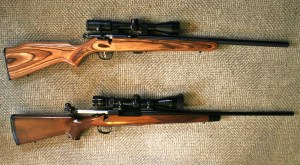 The same day you buy your hunting rifle, buy a .22 rimfire rifle that approximates the hunting rifle's configuration as closely as possible.