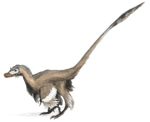 Velociraptor_dinoguy2 (2)