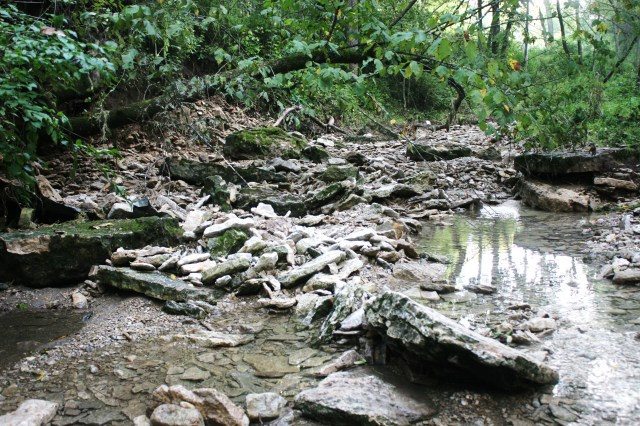 It seems beyond belief that a surge of water could move these huge slabs of stone, this jumble of rocks and twisted trees.  I think it was done by Trolls in a drunken rage.