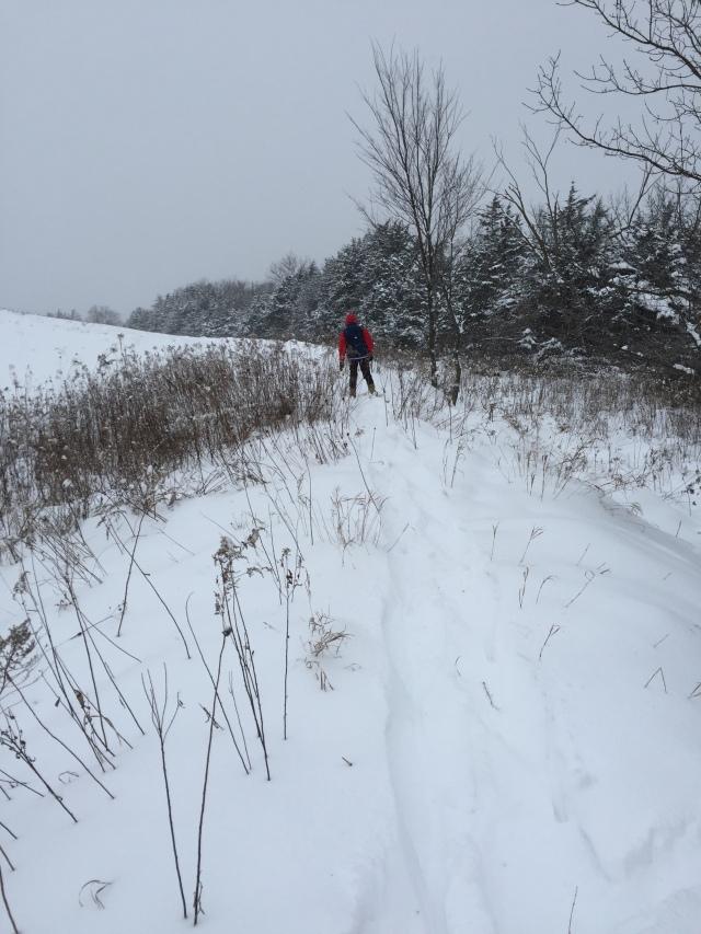 winter-walk-1