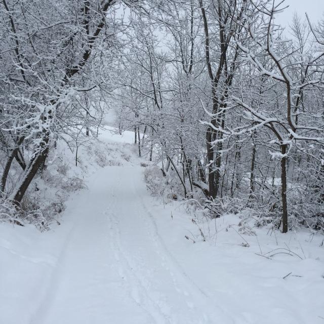 winter-walk-3
