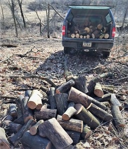 April firewood
