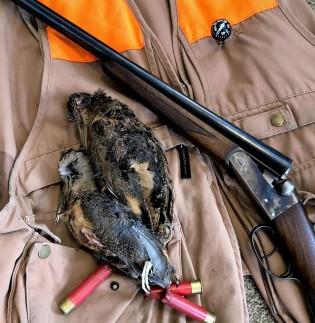 brace of woodcock