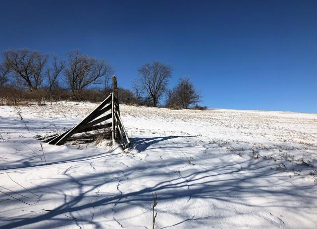 snowscape feb 8